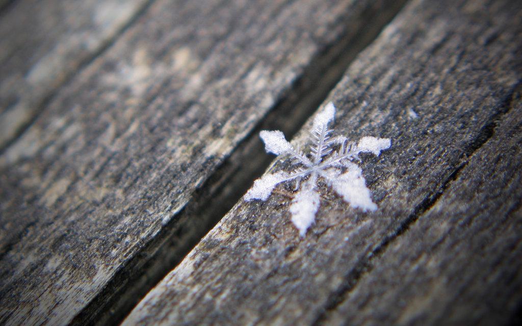 snowflake3w